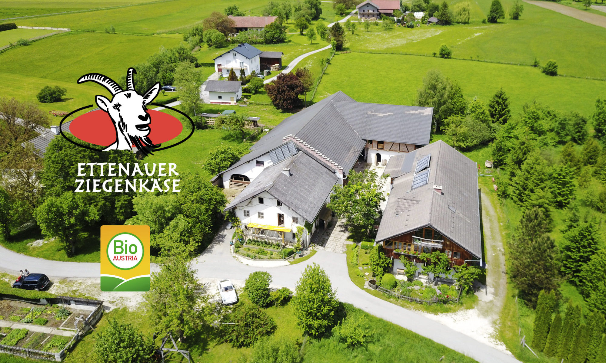 Ettenauer Bio Ziegenkäse Kitzfleisch Ziegenhof